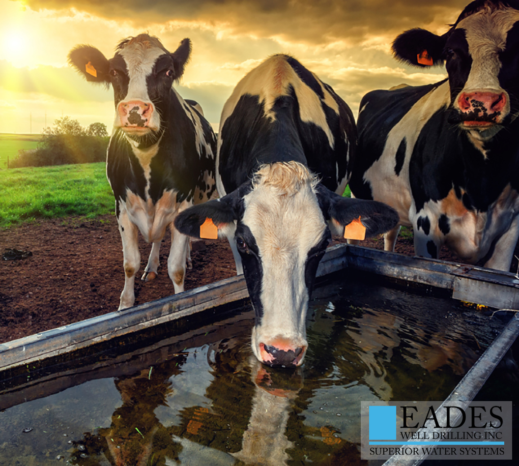 EADES WELL DRILLING AGRICULTURAL WATER SYSTEMS FOR LIVESTOCK