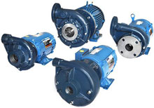 EADES WELL DRILLING Cast Iron Centrifugal Water Pumps